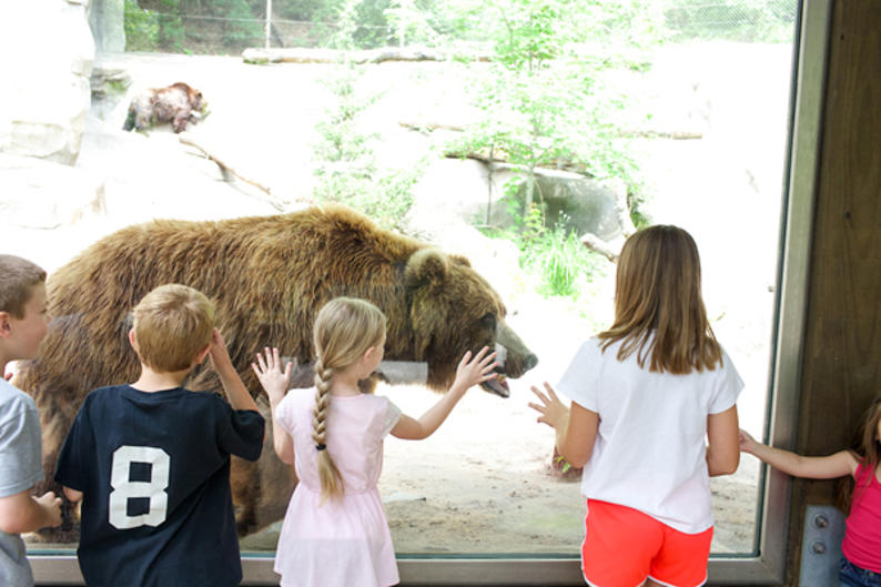From animal exhibits to the Sky Trail Ropes Course, John Ball Zoo is enjoyable for kids and adults of all ages.