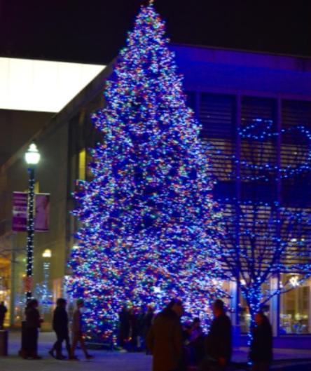 Christmas Tree at Rosa Parks downtown holiday lights