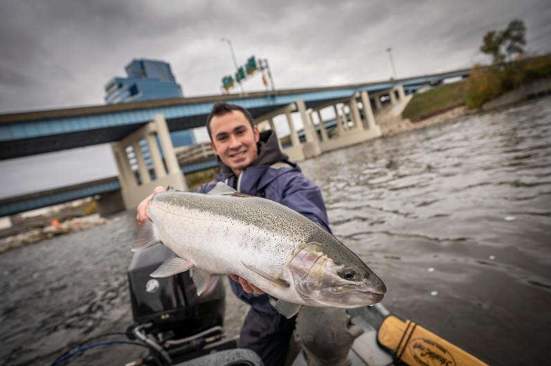 Expect to find migratory fish like salmon and steelhead (pictured) in the Grand River during the spring and fall.
