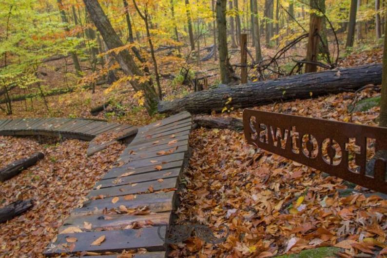 Merrell Trail Sawtooth