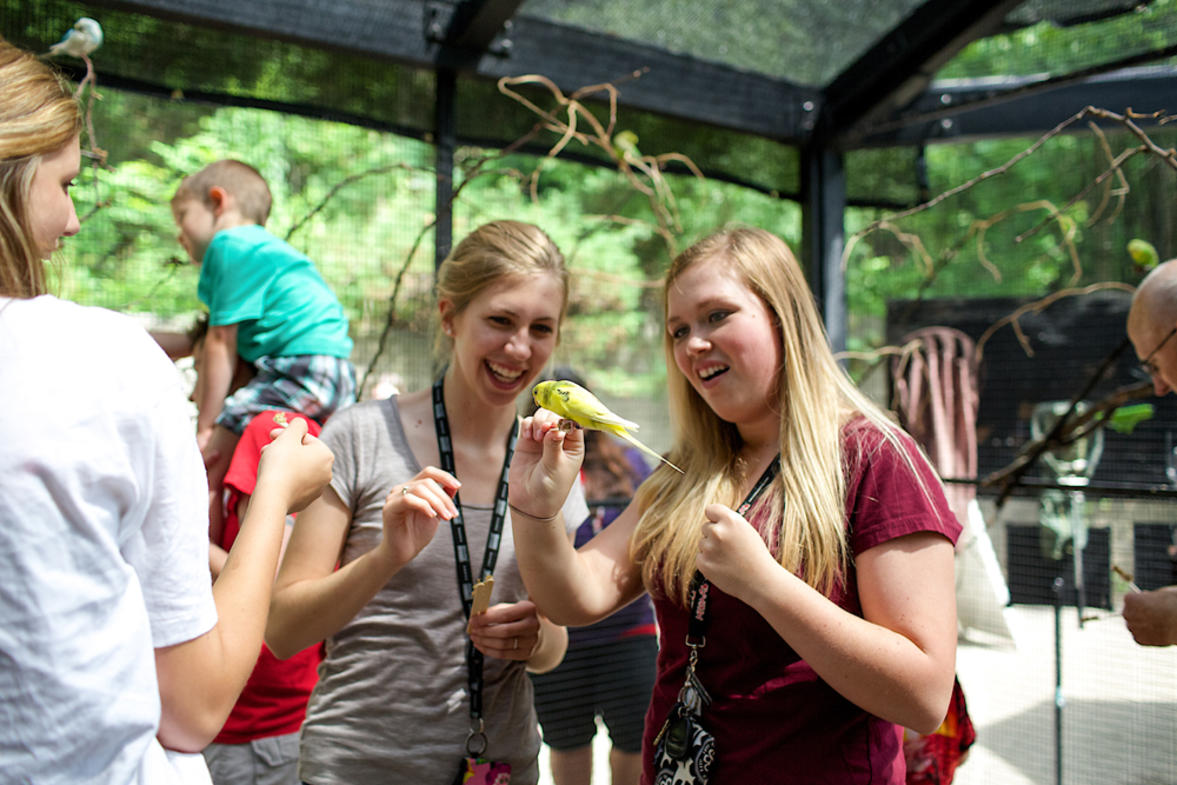 Get up close with the animals at John Ball Zoo in West Side neighborhood then have your meeting among the trees at the Bissel Tree House.