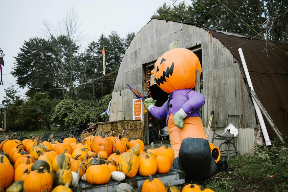 """The 20-minute Spooky Woods Hayride at Bethke Farms features familiar Halloween cutouts, a 20-acre pumpkin patch, and an area called """"Spooky Woods."""""""