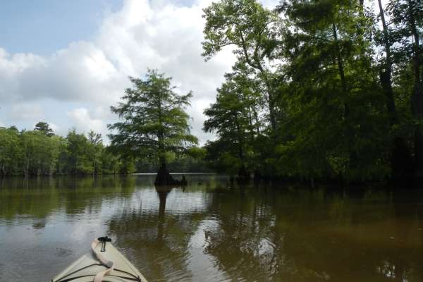 Kayaking in Beaumont
