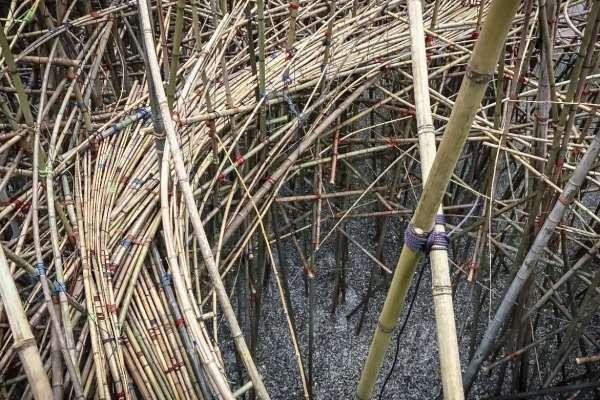 Big Bambu exhibit at MFAH