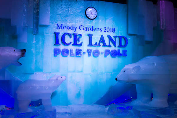 4280f2294e042 ICE LAND at Moody Gardens Galveston