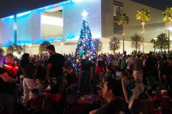 Tampa tree lighting