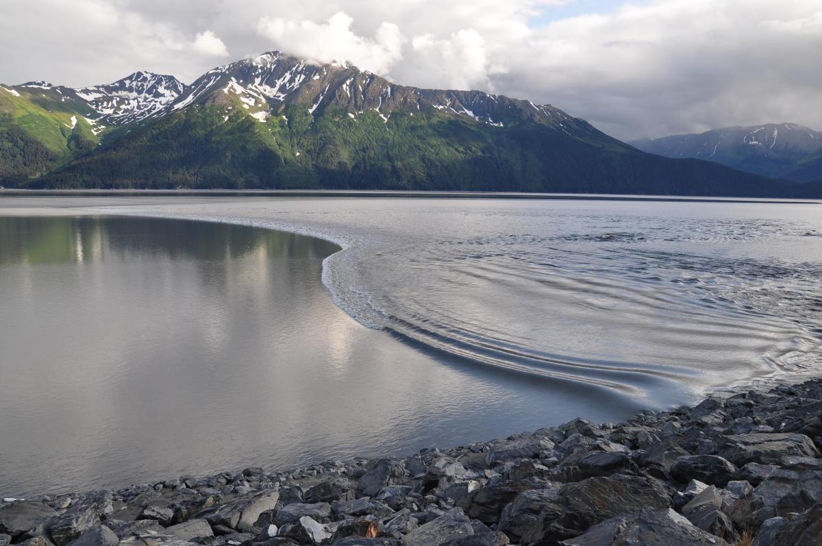 alaska bore tide viewing visit anchorage alaska