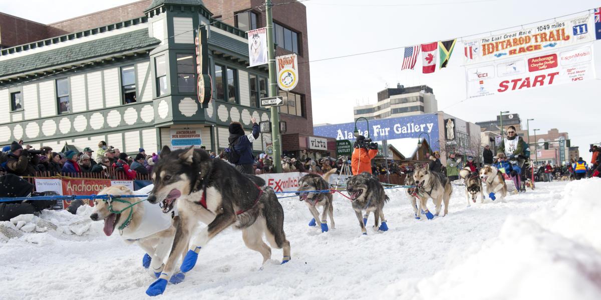 Winter Activities In Anchorage Alaska Visit Anchorage