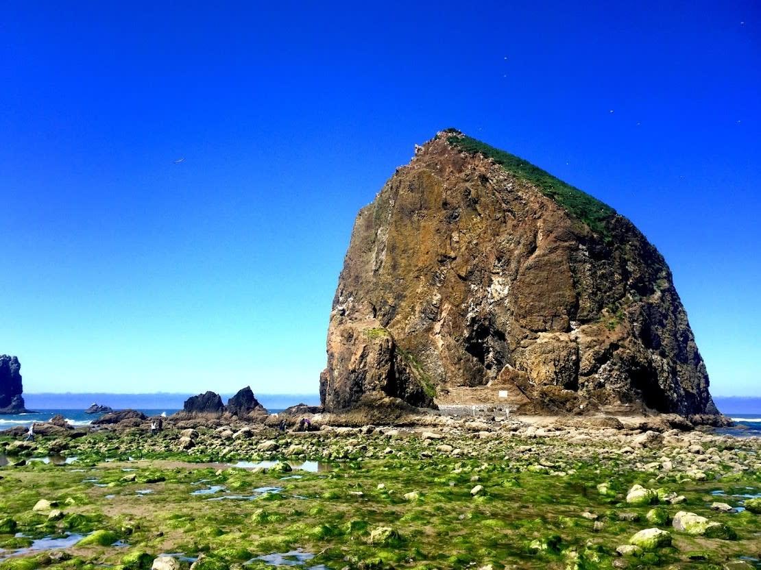 Oregon Coast Haystack Rock In Cannon Beach Oregon