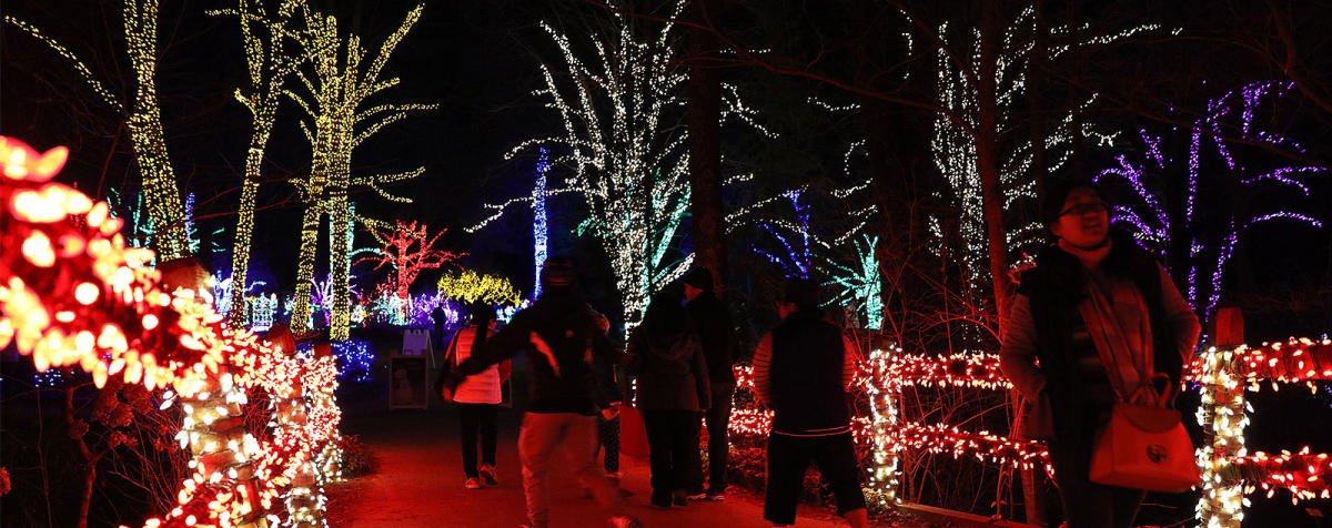 Christmas Light Shows - Bull Run Festival & More   Fairfax County, VA