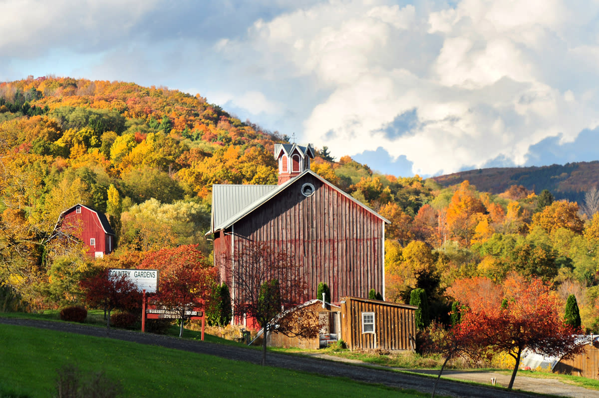 Best Fall Foliage in the Finger Lakes | Events & Festivals