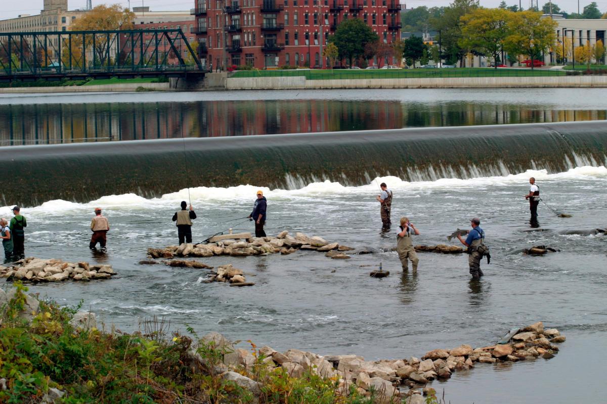 Steelhead Fishing in the Grand Rapids Area