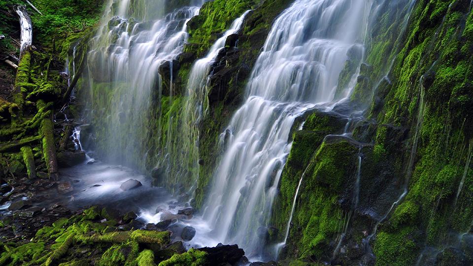 Go Mckenzie River Waterfalls Eugene Cascades Amp Oregon