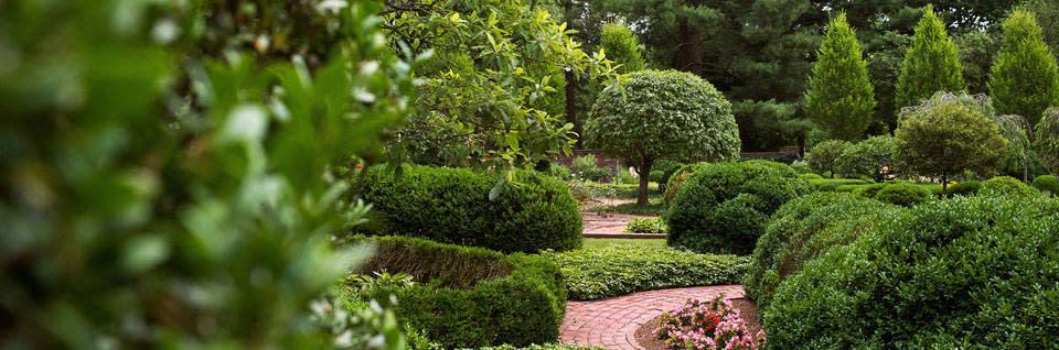 Garden Tours: Lexington, Kentucky Visitor Information