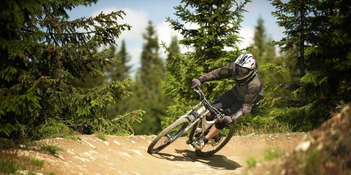 Freeride Mountainbiking Downhill Bikeparks Und Mtb