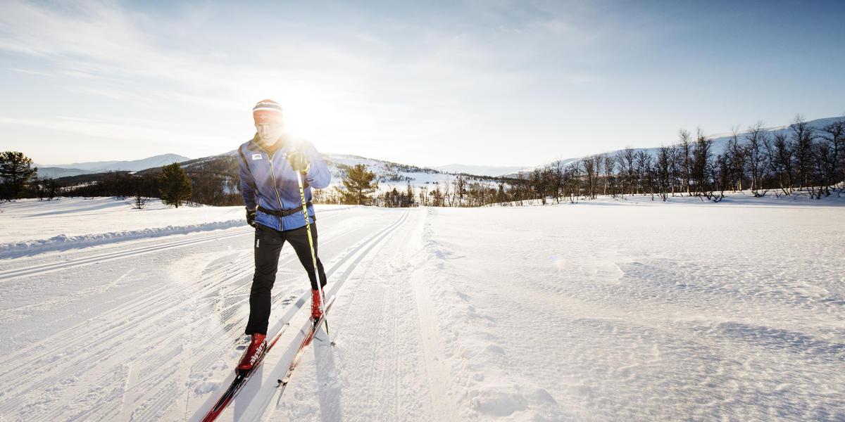649bff4869cf Беговые лыжи   Лучшие лыжни Норвегии