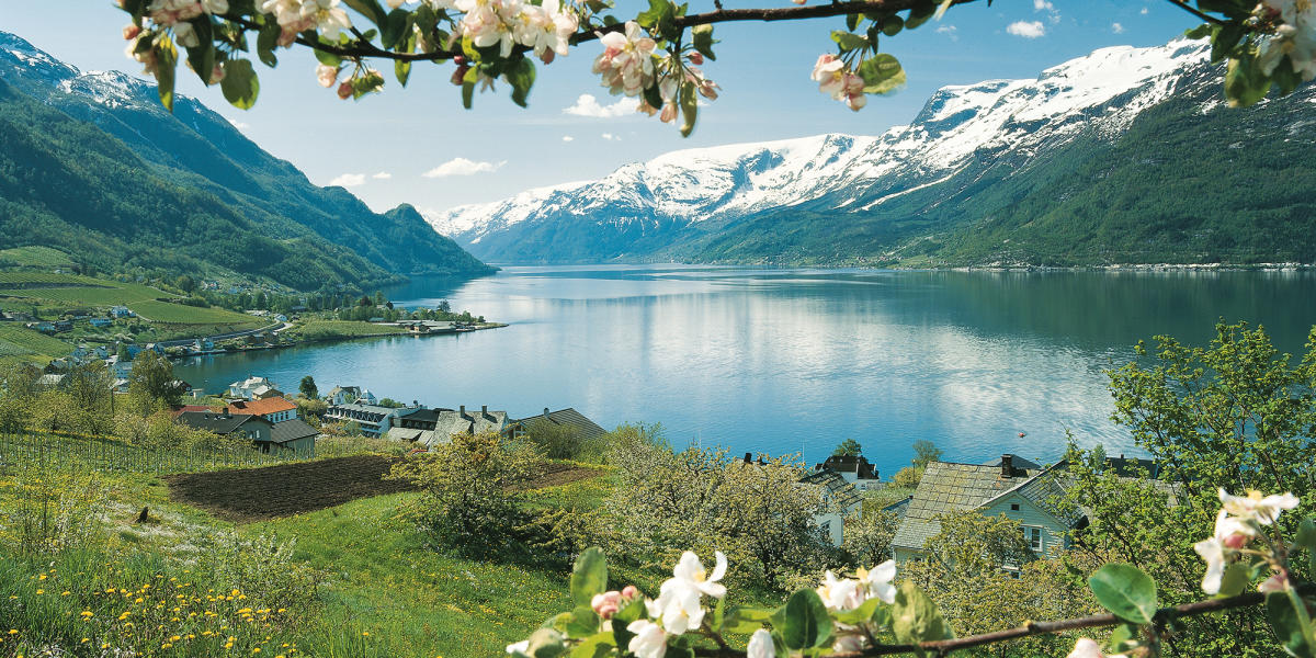 Fjord Tours Official Travel Guide To Norway Visitnorway Com