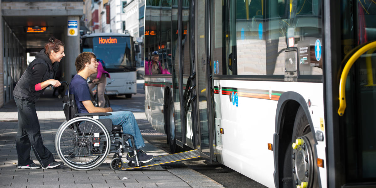 adults for Travel tours handicapped