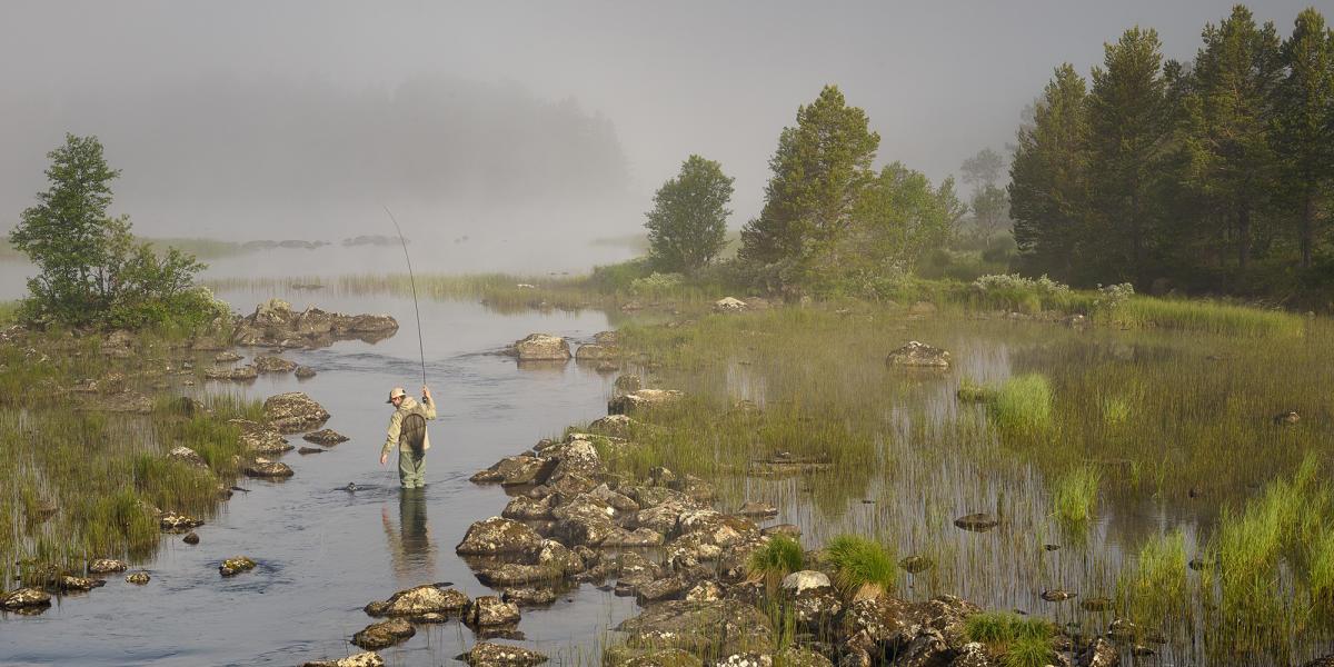 Were Going Freshwater Fishing