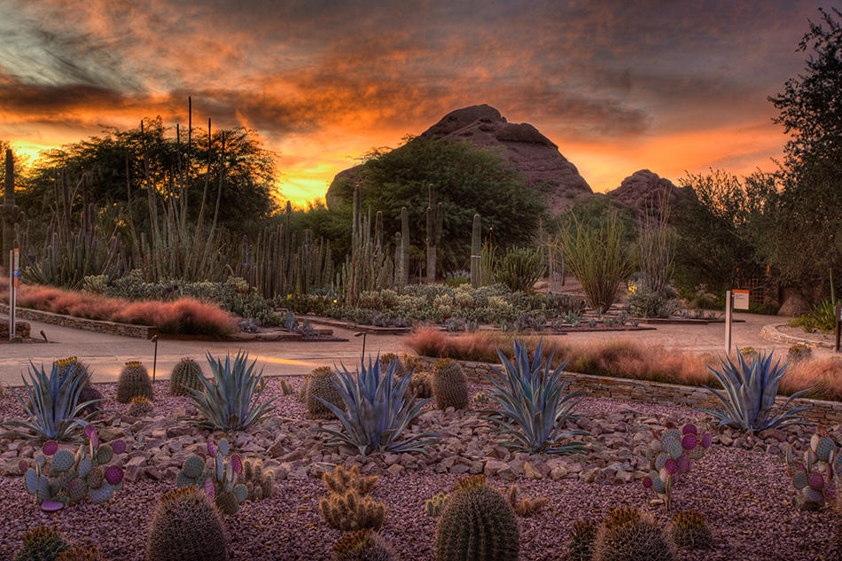Best Places To Watch A Sunset In Phoenix The Hot Sheet Blog