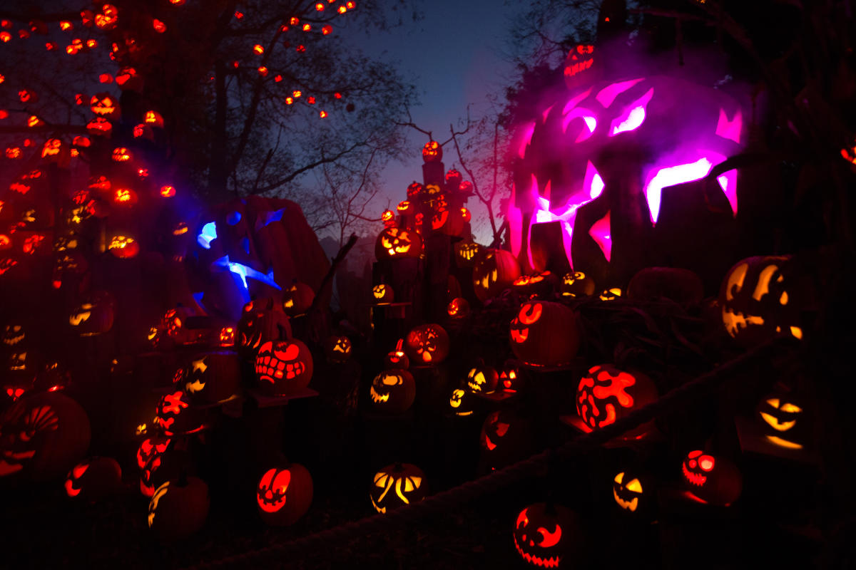 jack-o-lantern spectacular event at the roger williams park zoo