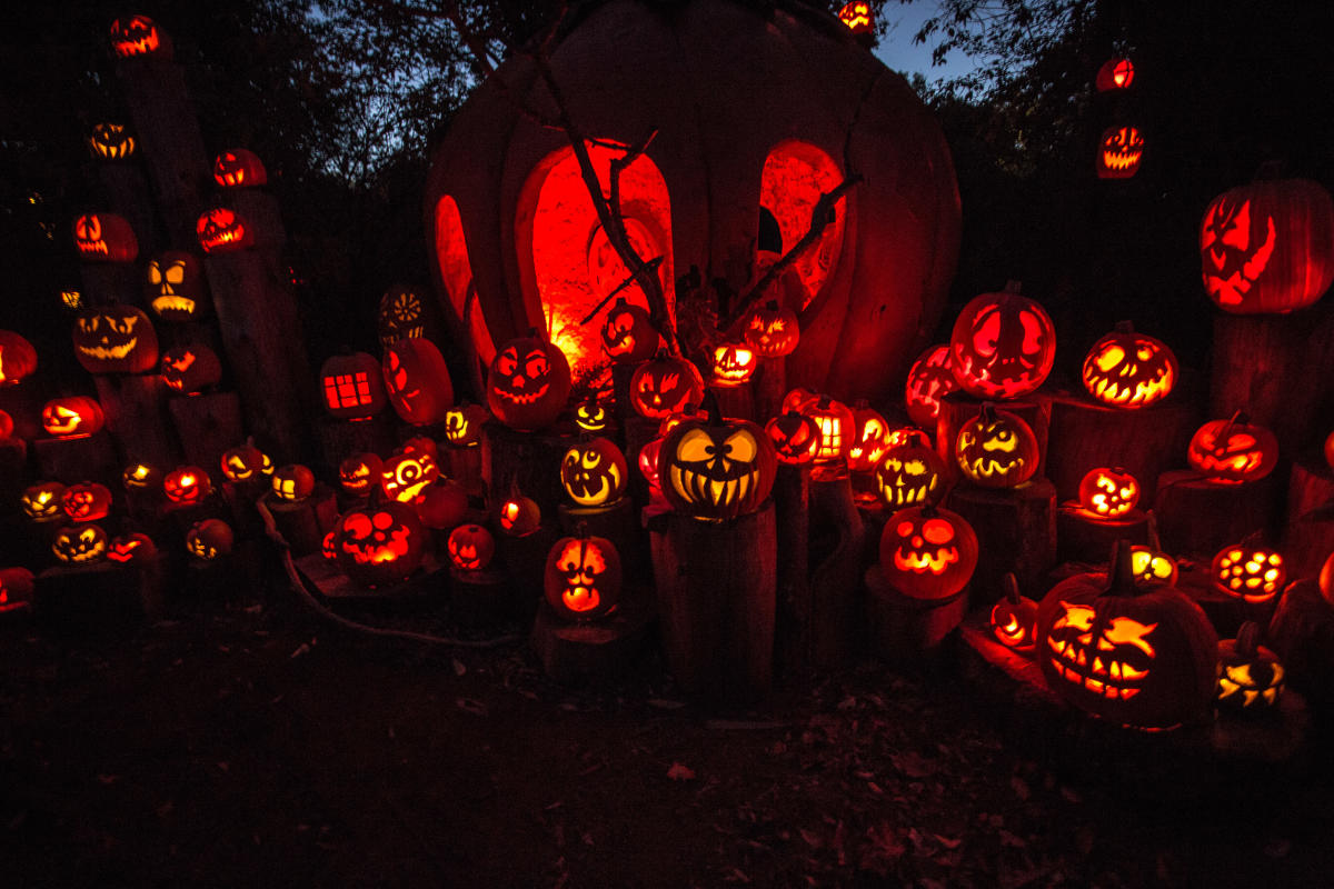 jack-o-lantern spectacular 2018 in providence | oct 4th - nov 4th