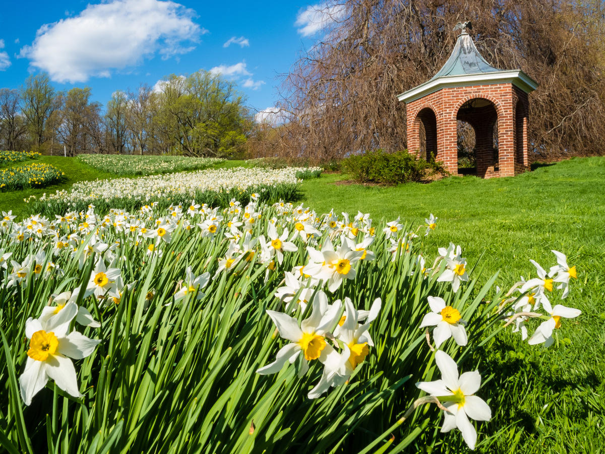 For a limited time winterthur and longwood gardens offer - Places to eat near longwood gardens ...