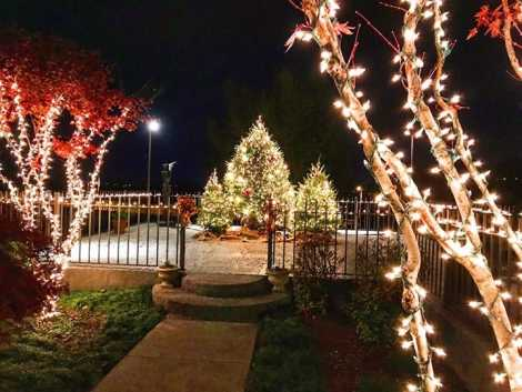 Holiday Trail of Lights_Bluff View Art District