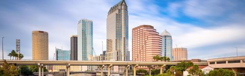 My Tampa Bay