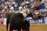 rodeo houston for blog