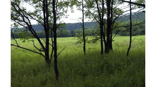 West Branch Preserve