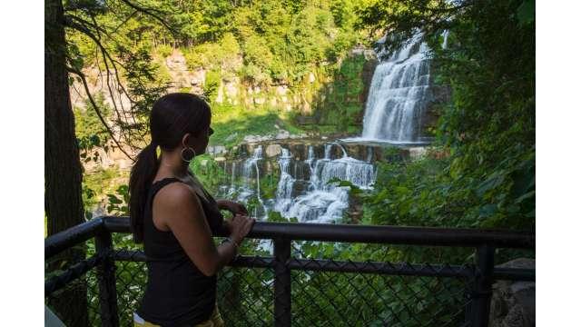 Chittenango Falls State Park 603