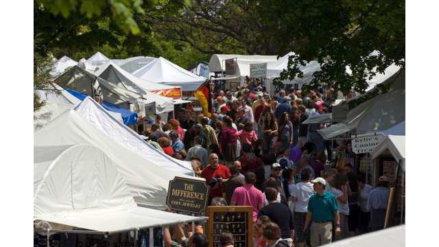 Tulip Fest - Albany