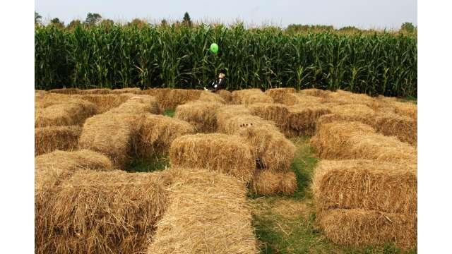 Harvest Festival at Bethel Woods