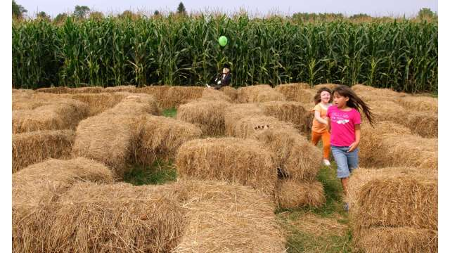 Harvest Festival at Bethel Woods 1629