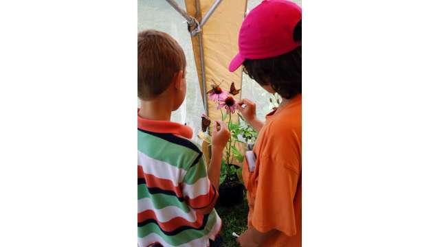 Harvest Festival at Bethel Woods 1646