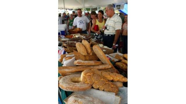Harvest Festival at Bethel Woods 1661