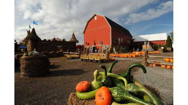 Cobble Creek Farm