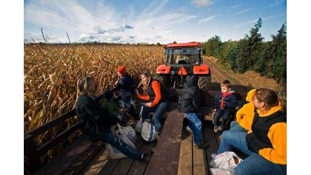 Cobble Creek Farm 1059