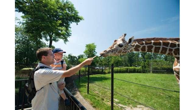 Buffalo Zoo 1097