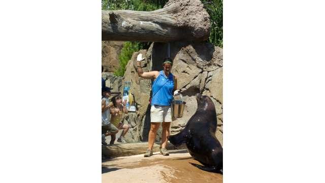 Buffalo Zoo 1098