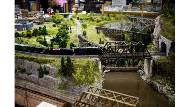 Medina Railroad Museumand Train Excursion 1108