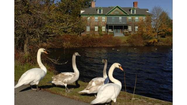 Connetquot River State Park Preserve 1431