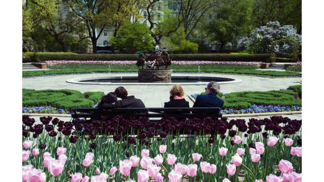 Central Park 1508