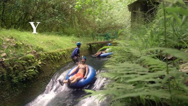 Meet Hawaii A-Z: Kauai