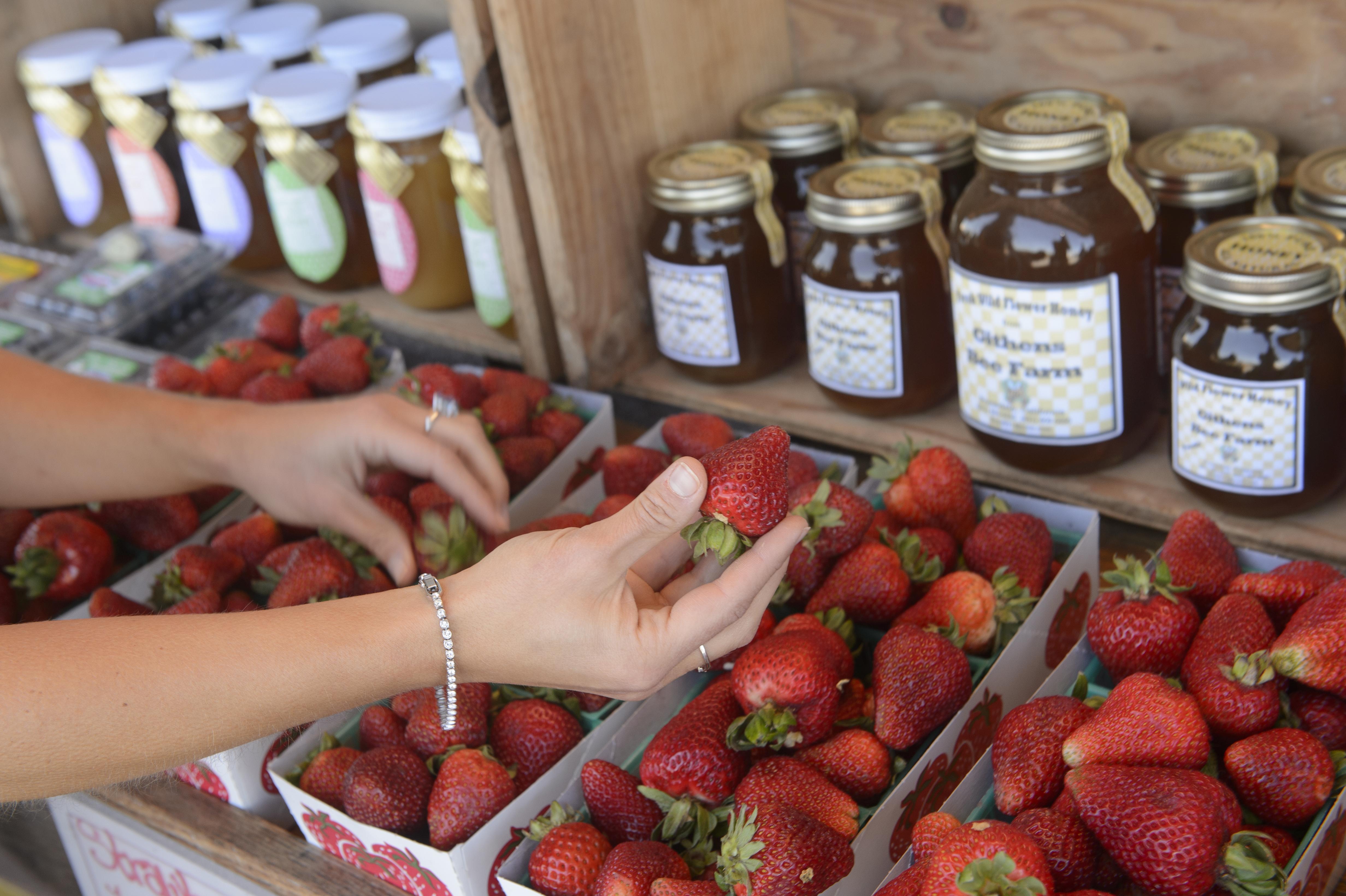 Marina Farmers' Market @ Marina, CA