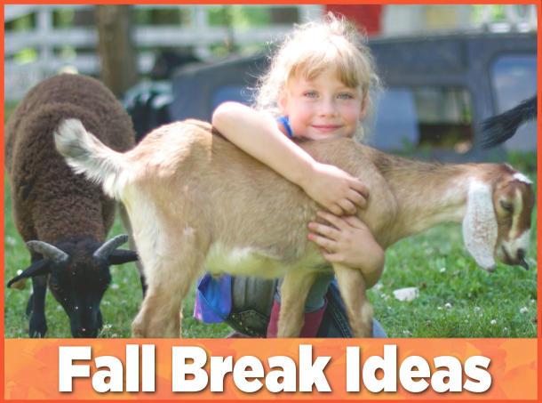 Fall Break in Hendricks County