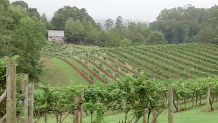 Jeff Frisbee | Addison Farms