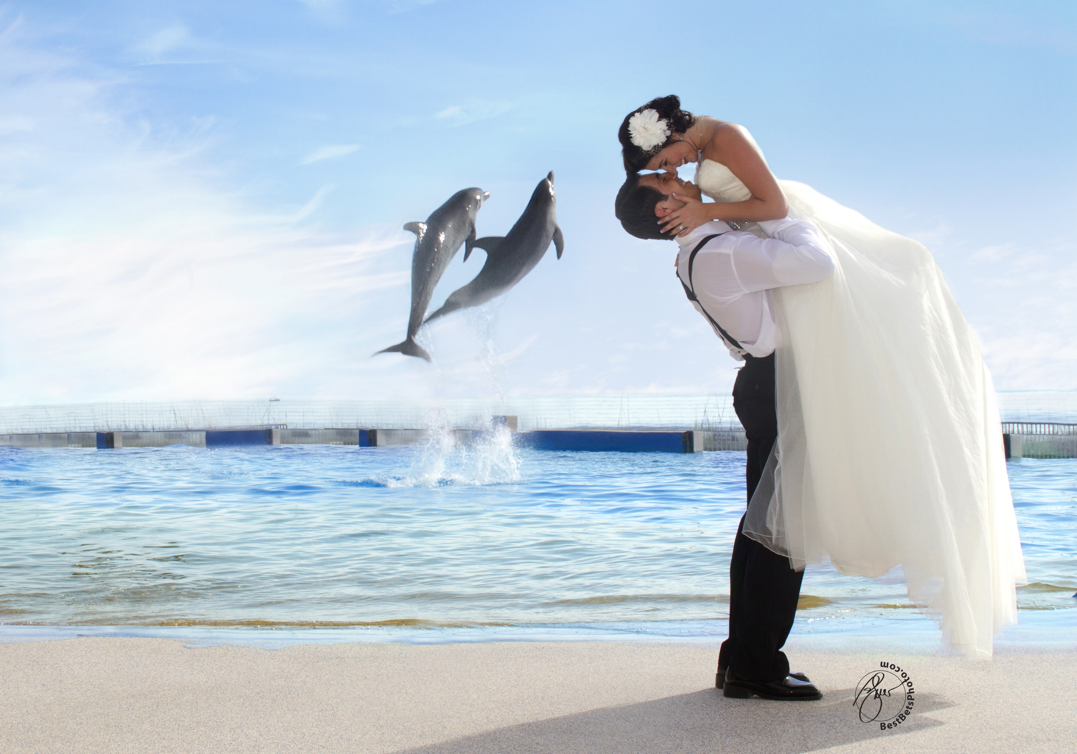 Marineland Wedding