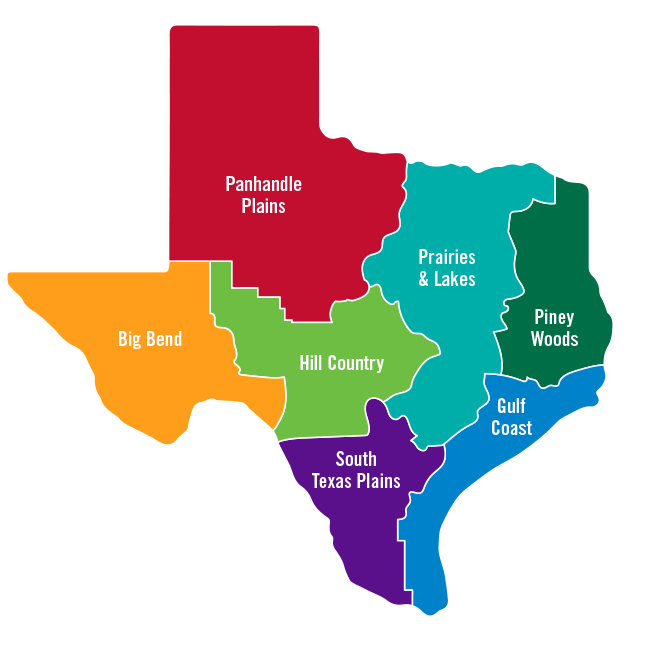 Map Of Major Cities In Texas.Places To Visit In Texas Cities Regions Hill Country Beaches